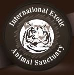 International Exotic Animal
